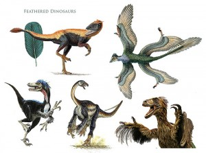 feathered dinosaur theories