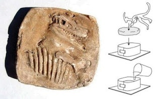make your own dinosaur fossil
