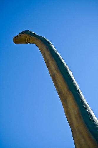 Brachiosaurus neck