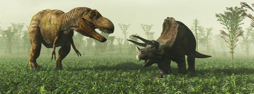 dinopit-fb-cover.jpg