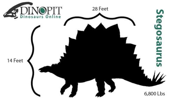 Stegosaurus Size Comparison