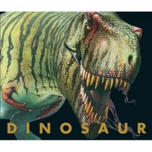 Dinosaur by Stephanie Stansbie
