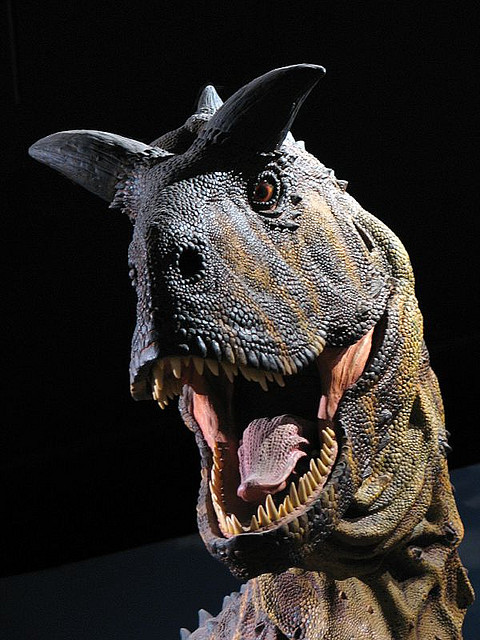 Real Carnotaurus