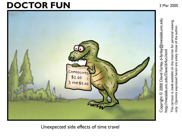 Dinosaur Poop For Sale