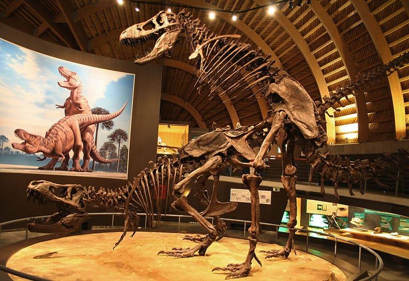 Dino Sex 93