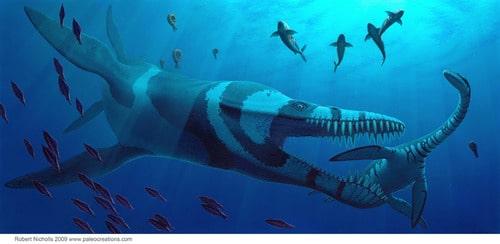 The Leviathan by Robert Nicholls
