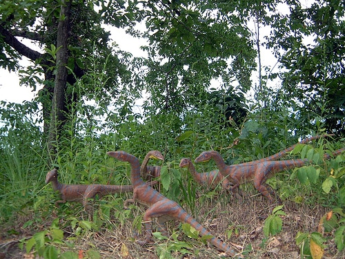 Compsognathus Family