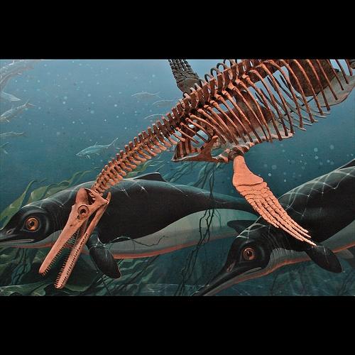 Dinosaur Bends