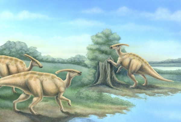 Parasaurolophus Book Spread  by Erica Lyn Schmidt