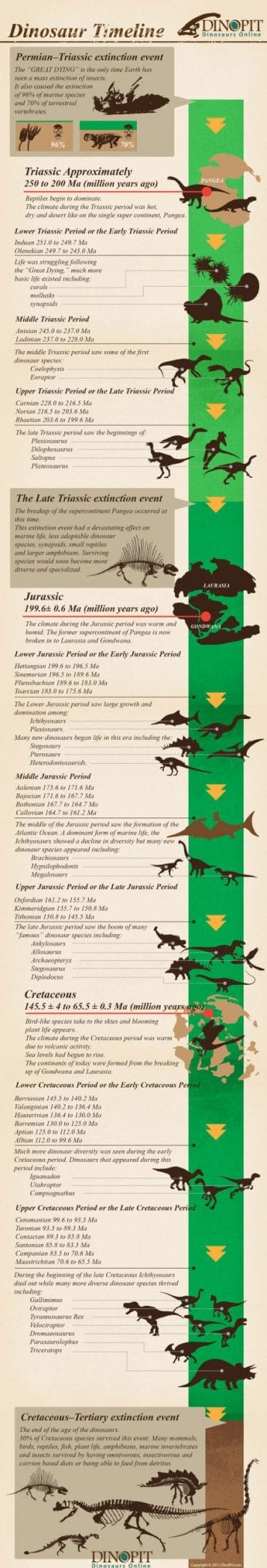 Dinosaur Infographic Timeline of History
