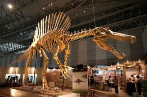 Biggest Dinosaur Comparison: Spinosaurus Aegyptiacus