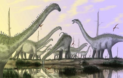 Sauropod Armor