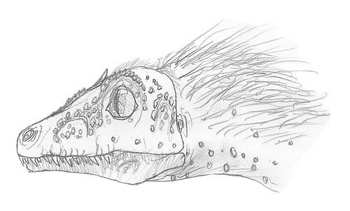 Deinonychosaur