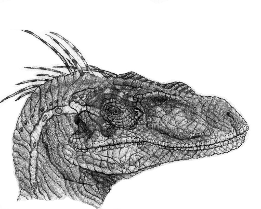 Velociraptor Art Worth Checking Out - DinoPit