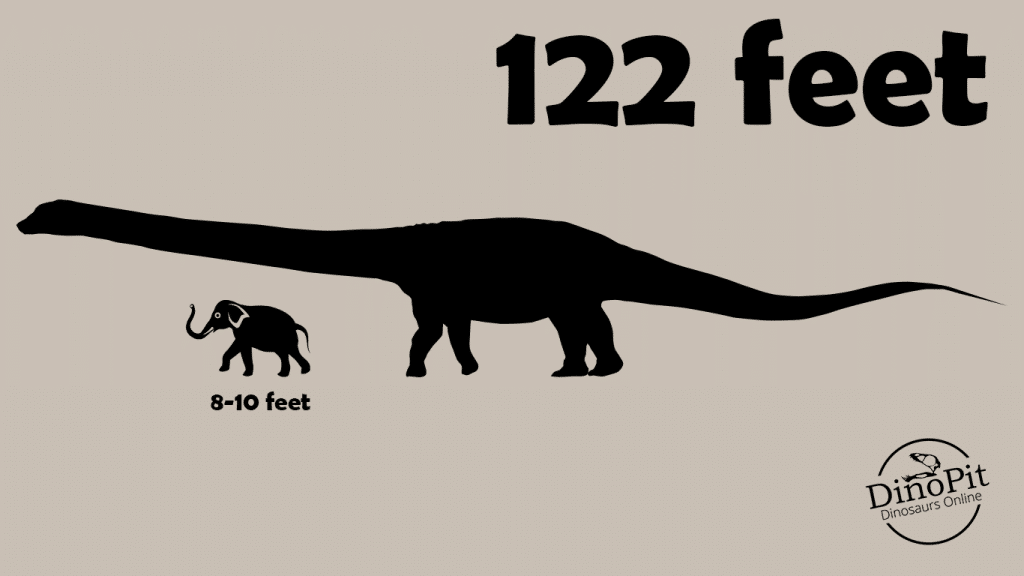Patagotitan is about ten times larger than an elephant